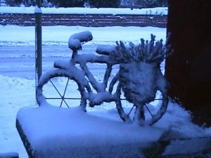 Rad im Schnee