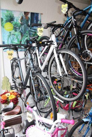 2016-fahrradhaus-mtb-starrgabel-IMG_5918